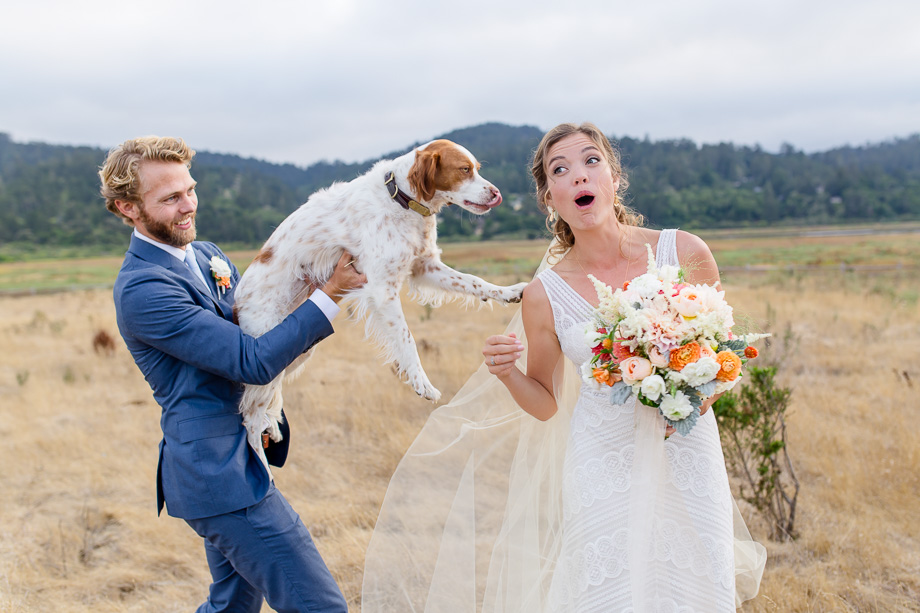 bride surprised by her groom and puppy - precious moment captured by A Tale Ahead Photography